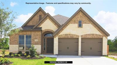 Pearland Single Family Home For Sale: 13801 Sun Canyon Lane