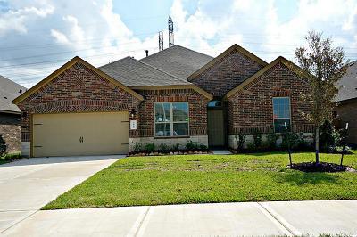 League City TX Single Family Home For Sale: $292,315