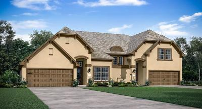 Conroe Condo/Townhouse For Sale: 143 Skybranch Drive