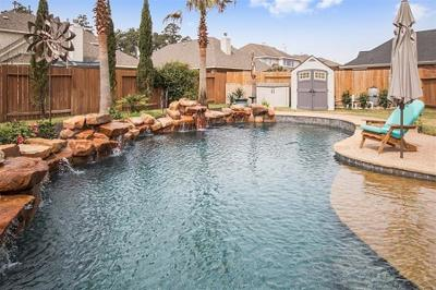 Tomball Single Family Home For Sale: 9119 Cimarron Falls