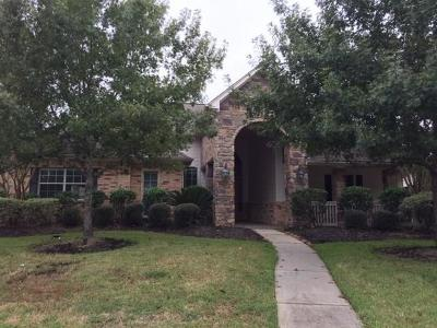 Single Family Home For Sale: 23114 Ammick Court