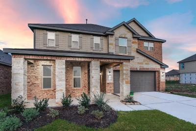 Pearland Single Family Home For Sale: 3313 Anderwood Arbor Lane