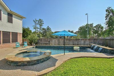 Tomball Single Family Home For Sale: 12703 Friar Village Drive