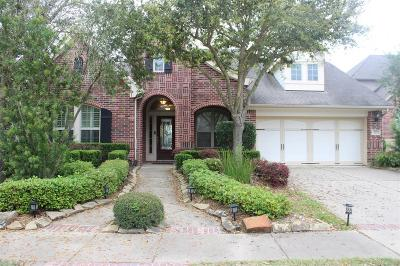 Sugar Land Single Family Home For Sale: 527 Newington Ln