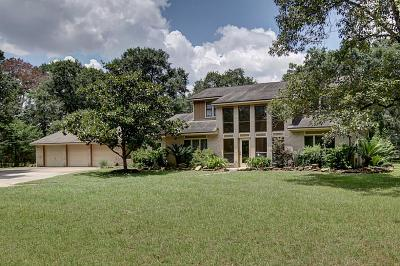 Tomball Country Home/Acreage For Sale: 20010 Angeli Drive