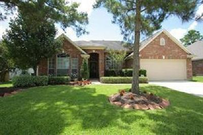 Tomball Single Family Home For Sale: 11507 Canyon Bend Drive