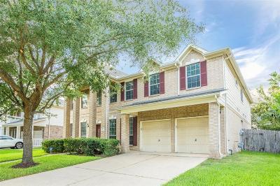 Sugar Land Single Family Home For Sale: 14002 Blue Vista Drive