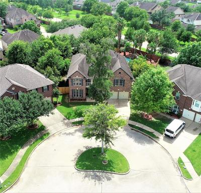 Sugar Land Single Family Home For Sale: 8003 Spring Bluebonnet