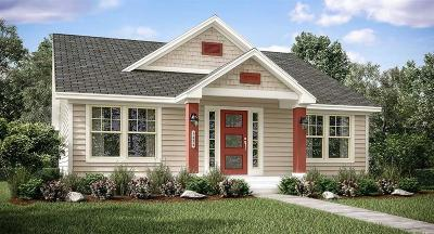 Montgomery Single Family Home For Sale: 222 North Lynx Trail