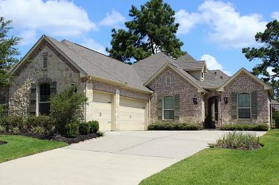 The Woodlands Single Family Home For Sale: 18 Little Falls Place