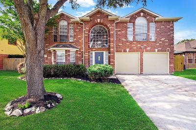 Katy Single Family Home For Sale: 23739 Norton House Lane