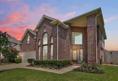 Tomball Single Family Home For Sale: 9111 Little Green Street Street