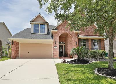 Sugar Land Single Family Home For Sale: 14242 Ayers Rock Road