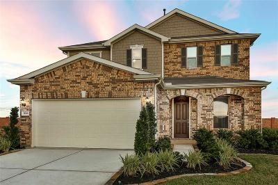 Fort Bend County Single Family Home For Sale: 8006 Desert Meadow Drive