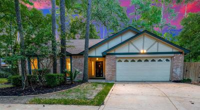Houston Single Family Home For Sale: 15011 Park Creek Court