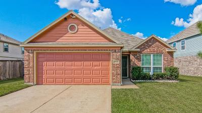 Single Family Home For Sale: 18614 Windy Stone Drive