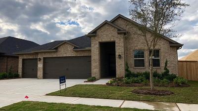 Fulshear TX Single Family Home For Sale: $354,900