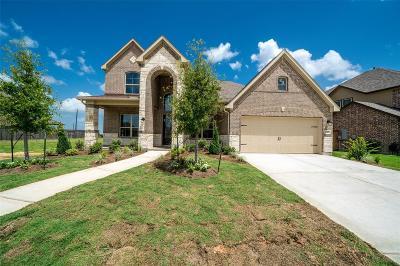 Fulshear Single Family Home For Sale: 20177 Anna Blue Crest
