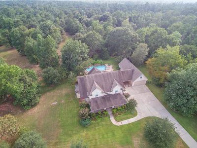 Montgomery Single Family Home For Sale: 133 Lyndsey Drive