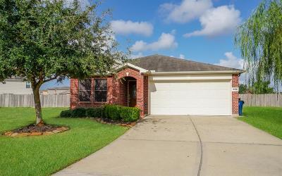Rosenberg Single Family Home For Sale: 802 Crabapple Way