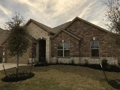 Katy Single Family Home For Sale: 23539 Mantova River Drive
