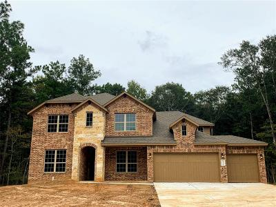 Conroe Single Family Home For Sale: 11214 Quiet Lake Drive