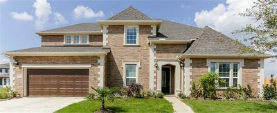 Sugar Land Single Family Home For Sale: 4310 Breezy Grove Court
