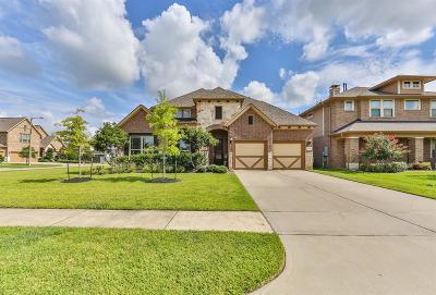 League City Single Family Home For Sale: 3051 Tradinghouse Creek Lane