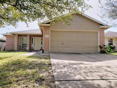 Houston Single Family Home For Sale: 2107 Chalet Road