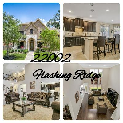 Single Family Home For Sale: 22002 Flashing Ridge Drive