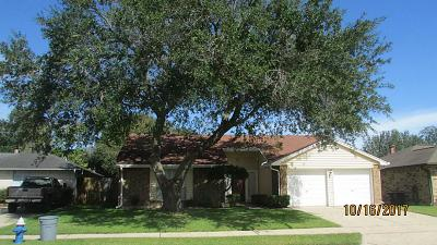 Friendswood Single Family Home For Sale: 16735 Carrack Turn Drive