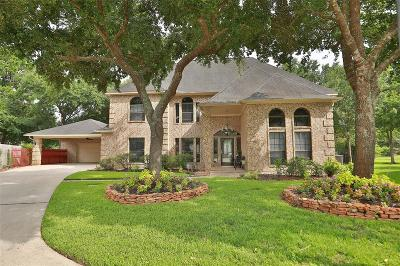 Single Family Home For Sale: 18314 Marlin Waters Drive