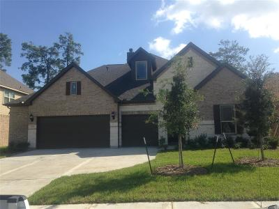 Tomball Single Family Home For Sale: 22714 Alderdale Lane