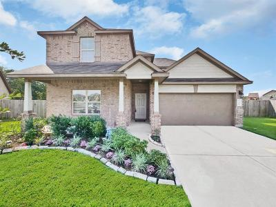 Fort Bend County Single Family Home For Sale: 9718 Rich Mountain Drive