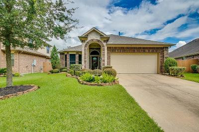 League City Single Family Home For Sale: 2846 Torano Circle Circle