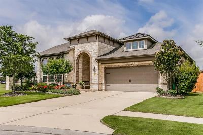 Cypress Single Family Home For Sale: 9803 Cat Hollows Court