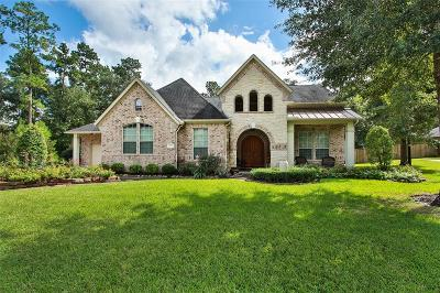 Conroe Single Family Home For Sale: 13125 Autumn Ash Drive