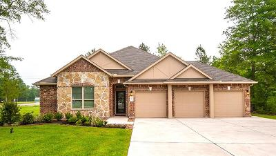 Conroe Single Family Home For Sale: 4503 Axis Trail
