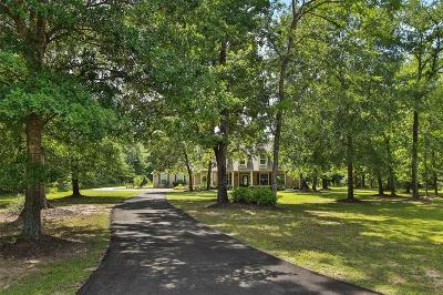 Single Family Home For Sale: 27011 Spotted Pony Court