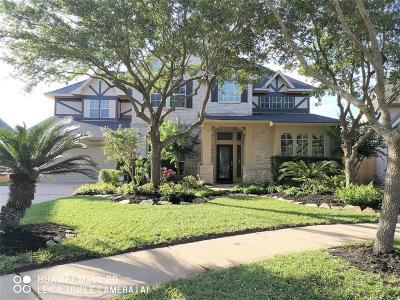 Sugar Land Single Family Home For Sale: 5410 Dunston Court