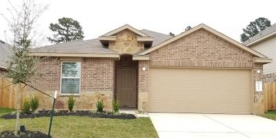Conroe Single Family Home For Sale: 14048 Silver Falls Court