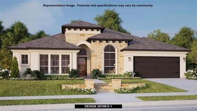 Friendswood Single Family Home For Sale: 800 Galloway Mist Lane