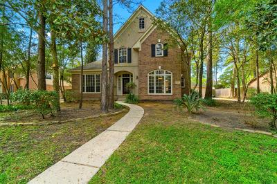 The Woodlands Single Family Home For Sale: 27 S Floral Leaf Circle S