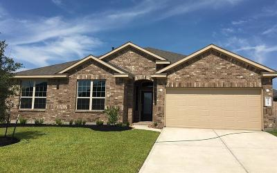 Katy Single Family Home For Sale: 4911 Tuscany Farm Drive