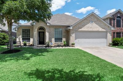 Tomball Single Family Home For Sale: 19030 Sun Pass Drive