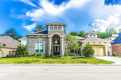 Houston Single Family Home For Sale: 2948 S Cotswold Manor Drive