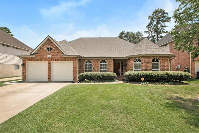 Tomball Single Family Home For Sale: 11919 Lakewood Hills Drive