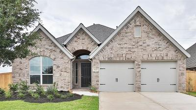 Manvel Single Family Home For Sale: 2727 Cutter Court