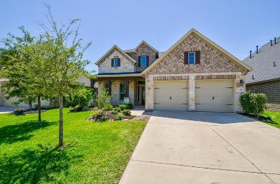 Katy Single Family Home For Sale: 2810 Walnut Crest Drive