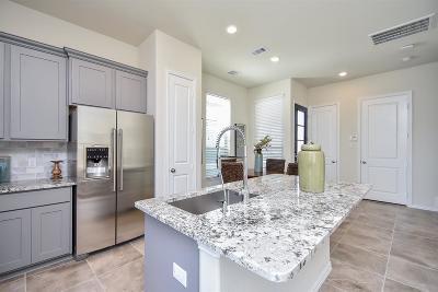 Houston Condo/Townhouse For Sale: 234 Garrison Drive